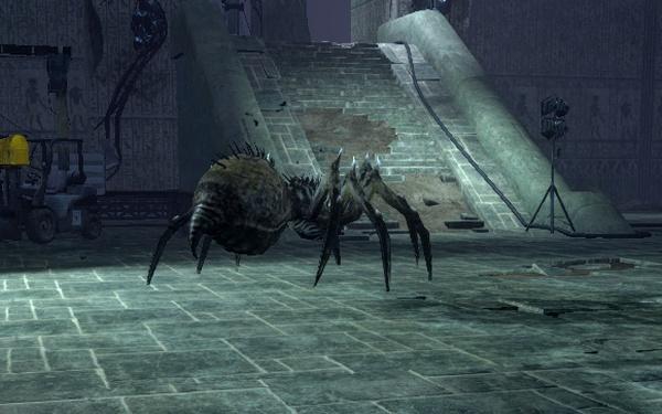Arachnid